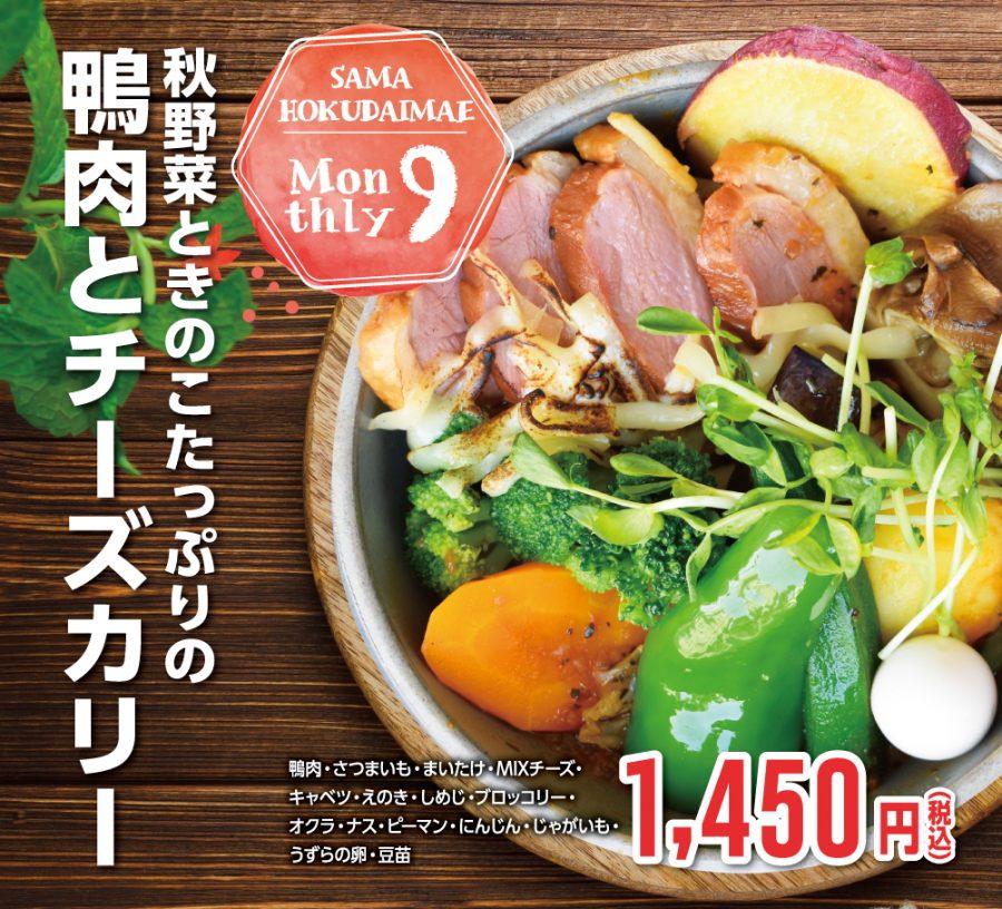 秋野菜ときのこたっぷりの鴨肉とチーズカリー