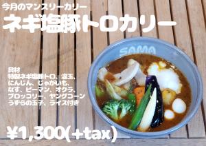 ネギ塩豚トロカリー 2月マンスリーカレー SAMA神田店